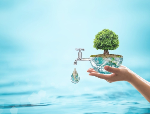 Eco-Friendly Remodeling Ideas to Increase Water Conservation